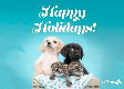 E-Card: Holiday Puppies and Kittens
